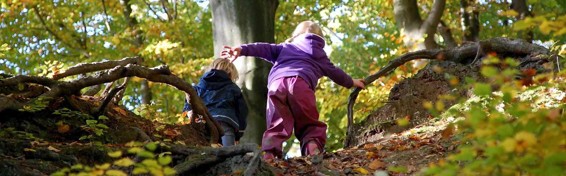 Naturkindergarten Üllehütt